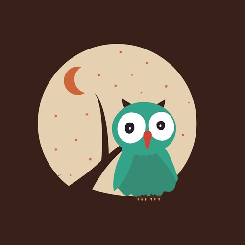 Owl Illustrations